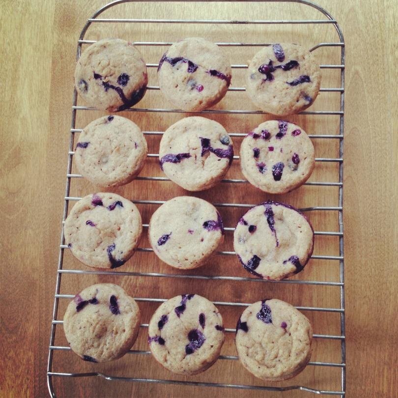 blueberry banana poppyseed muffins.